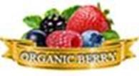 """Плодово-ягодный питомник """"ORGANIC BERRY"""""""