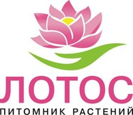 КФХ Питомник растений «ЛОТОС»
