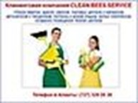 Clean Bees Service
