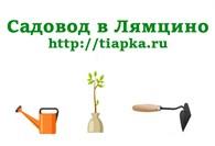 Садовод в лямцино
