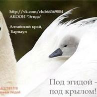 """Алтайская краевая общественная организация инвалидов """"Эгида"""""""