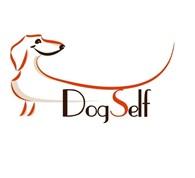 РОО DogSelf, Кинологический Развивающий Центр