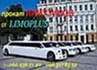 limoplus