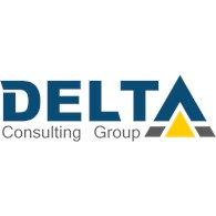 LLC Delta Consulting Group