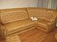 Субъект предпринимательской деятельности ЧП «Профи мебель»