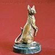 Dzhinestra Sphynx питомник кошек