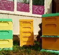 ИП Пчелиные ульи