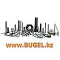 ТОО «Альянс Метиз» (Bugel)