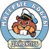 """ИП Дайвклуб """"Матерые Бобры"""""""