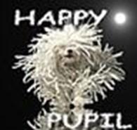 Общество с ограниченной ответственностью Школа грумеров Happy*Pupil