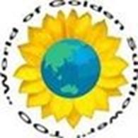 Частное предприятие ТОО «World of Golden Sunflower»
