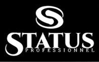 Status professionnel