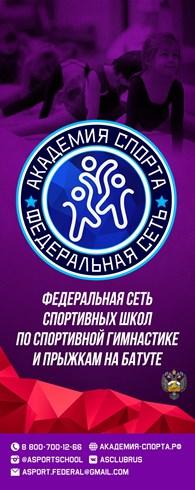 Академия Спорта на Хрустальногорской