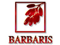 "Ногтевая студия ""BARBARIS"""