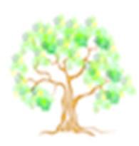 Дерево - Сити