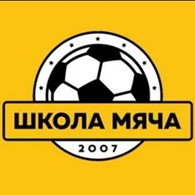 """Школа Мяча"" Викинг"
