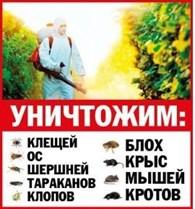Дезис Москва