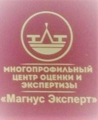 Магнус Эксперт