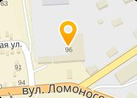 Восточный сервисный центр, Компания