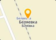 Лтк Альянс, ЧП