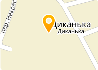 Стаси Насиння, ООО
