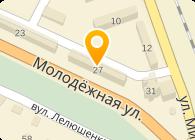 Дмитриева И.Ю, ЧП