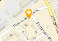 Транспеле компания, ООО