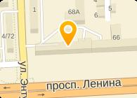 АУДИТ-ИНТЕЛЛЕКТ ООО