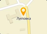 БУ ВО «Липовский дом-интернат для престарелых и инвалидов»