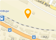 Автотюнинг, Компания (W-tuning)