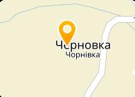 Строй Лидер ВЮСТ, ЧП