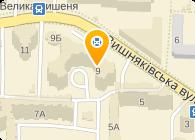 Моторкиев (Motorkyiv), Компания