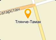 ГАУСО «Тукаевский дом-интернат для престарелых и инвалидов»