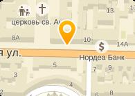 ФИЗИКО-МАТЕМАТИЧЕСКИЙ ЛИЦЕЙ № 239