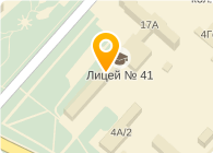 № 41 ПРОФЕССИОНАЛЬНЫЙ