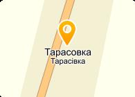 ТЕРА, ОАО