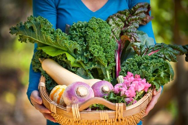 Сад огород семена овощей