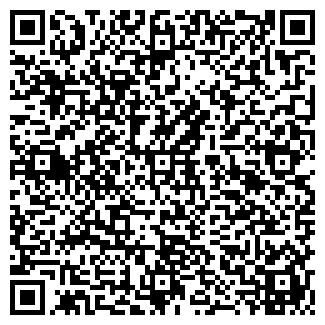 QR-код с контактной информацией организации ТелеМир