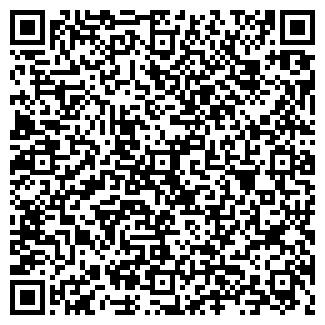 QR-код с контактной информацией организации Старгород
