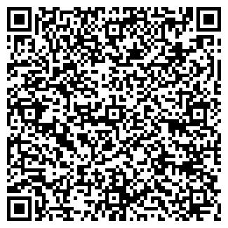 QR-код с контактной информацией организации ALCATEL