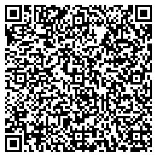 QR-код с контактной информацией организации VIP-СТИЛЬ, ООО