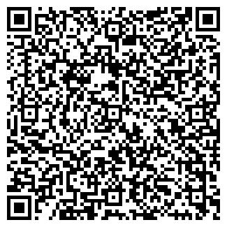 QR-код с контактной информацией организации IST