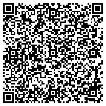 QR-код с контактной информацией организации ПЛЕЯДА, ООО