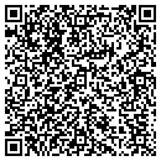 QR-код с контактной информацией организации АРИИ-АУДИТ, ООО