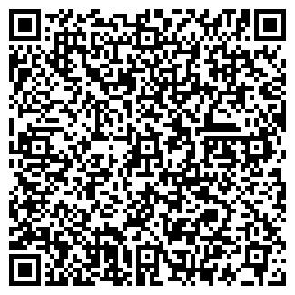 QR-код с контактной информацией организации ПЛИШ М.Ю., ЧП