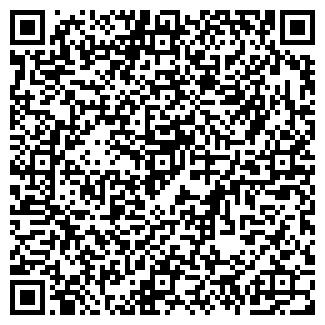QR-код с контактной информацией организации ВИЛЕНА, ЧФ