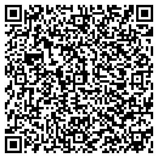 QR-код с контактной информацией организации ОРВИС, ООО