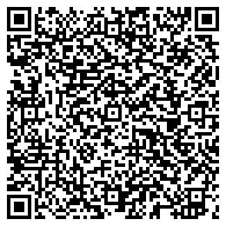 QR-код с контактной информацией организации ДВЕ ЗВЕЗДЫ