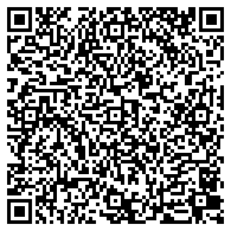 QR-код с контактной информацией организации DIZZA
