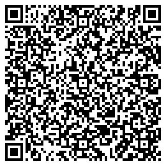 QR-код с контактной информацией организации СТН, ООО